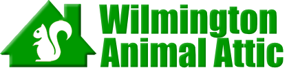 Wilmington Animal Attic